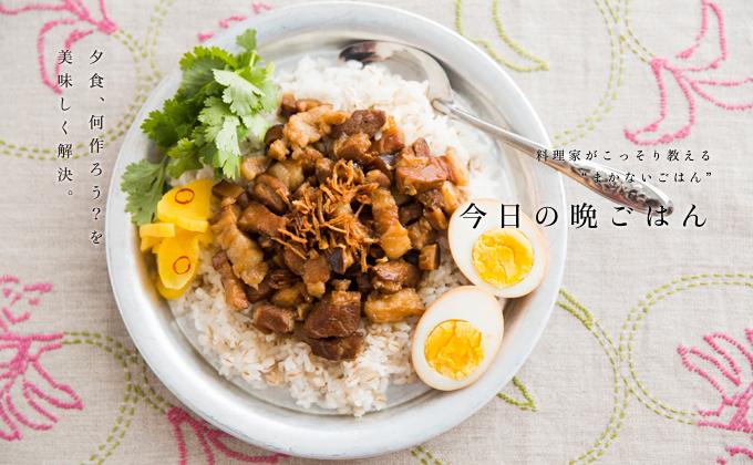 ルーローファン(豚肉の煮込み丼)